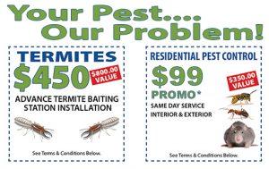 Pest Control Promos