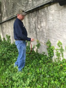 exterminator spraying for pests