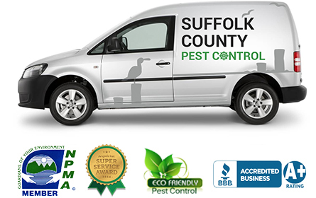 Suffolk County Pest Control Van